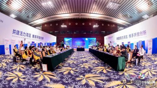 第十五届中国国际显示大会圆桌高峰论坛与您畅谈15年显示行业的风雨征程