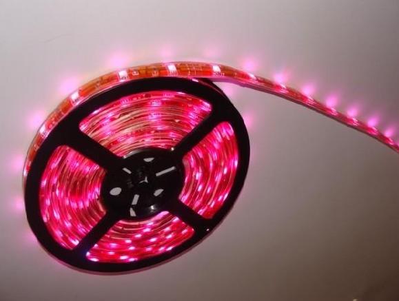 SMD3528 5050LED软灯条